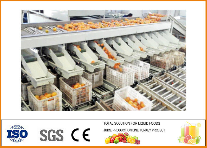 20T/H Capacity Orange Juice Production Line , Orange Juice Processing Plant