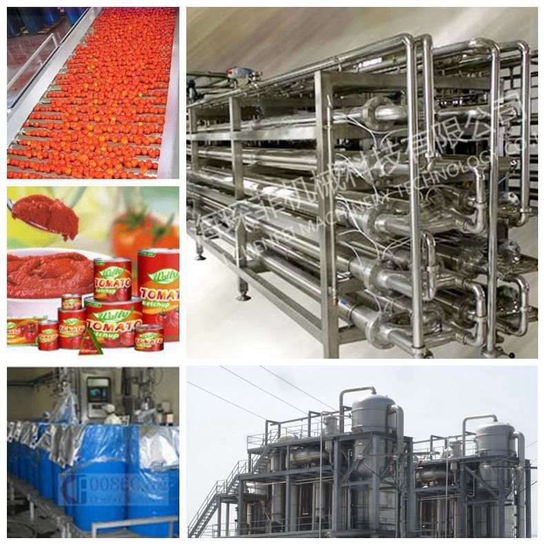 Tomato Tin Canned Beverage Manufacturing Equipment 15 - 20 Cans / Minute