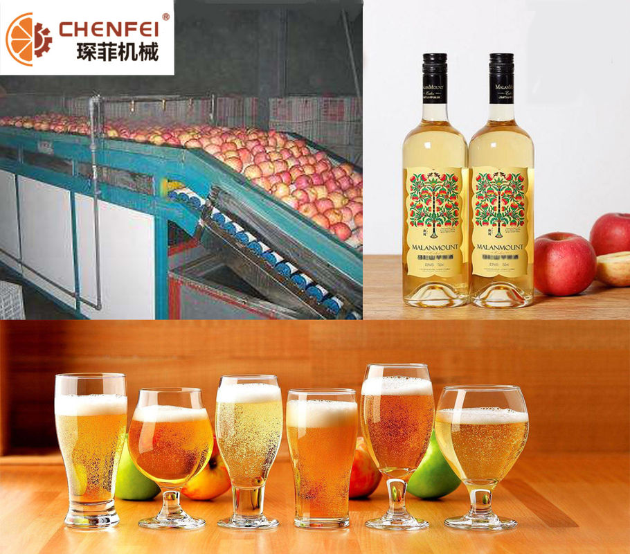 Energy Saving Fermentation Equipment Small Capacity Apple Pear Fruit Wine Production Line