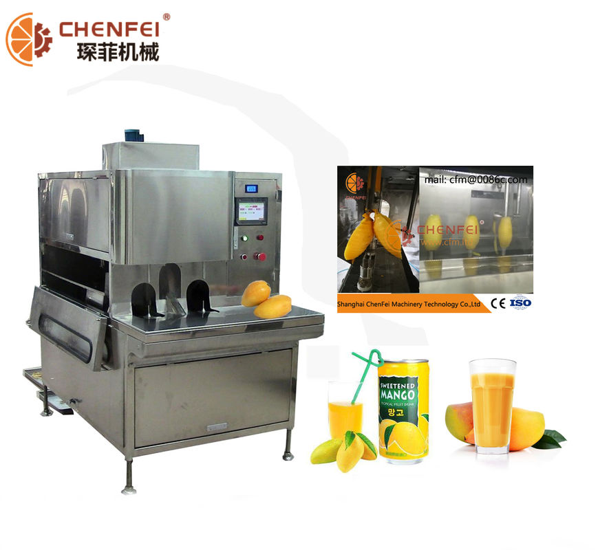 Food Grade SS304 Dried Mango Processing Machine Processing Line 380V / 220V