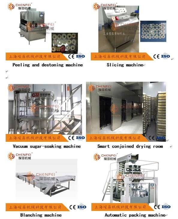 1000kg/H Apple Pear Dried Fruit Production Line Peeled Core Machine